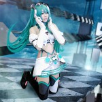 Int'l cosplayers, Japanese stars headline BOA 2013